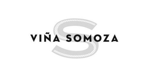 Viña Somoza