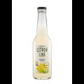 Ekologisk lemonad med citron och lime