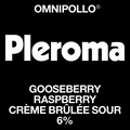 Pleroma Gooseberry Raspberry Creme Brulee Sour 6 %