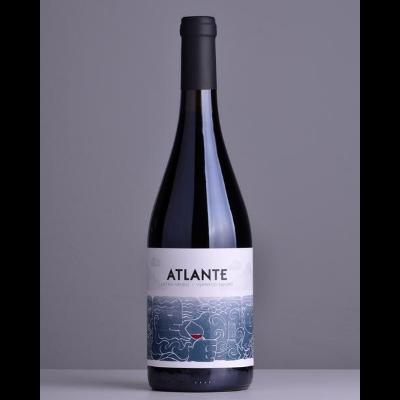 Atlante Listan Negro 2017